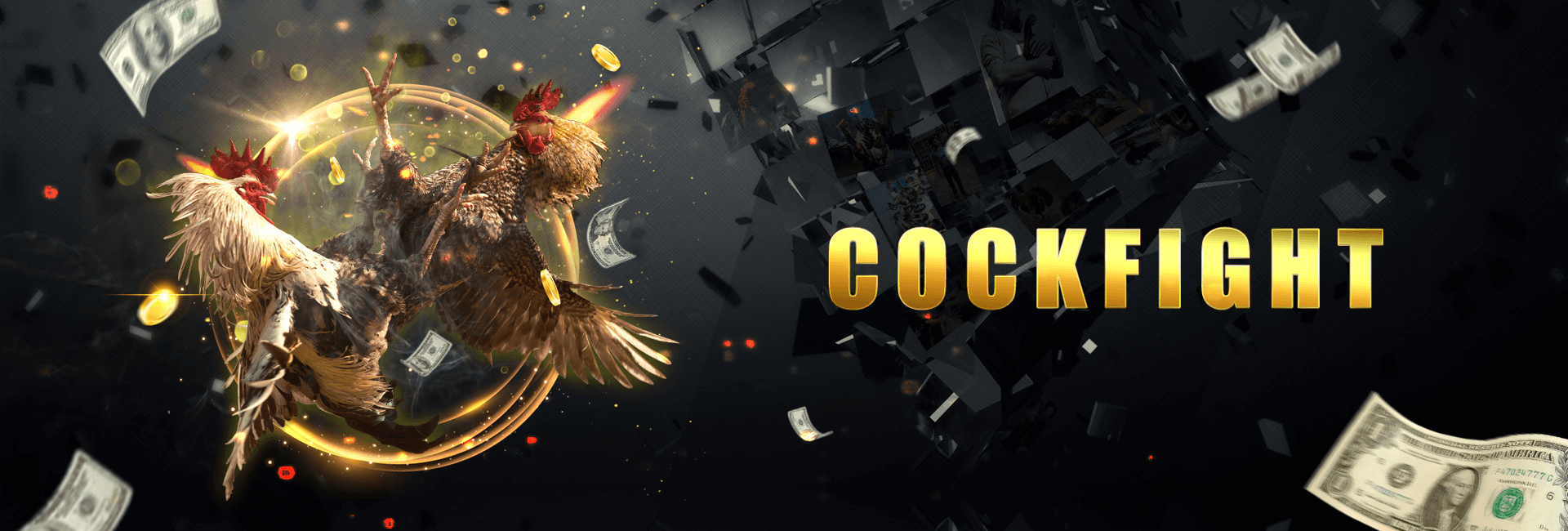 Cockfight Page